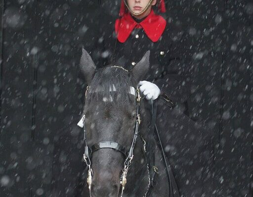 Young cavalryman in the snow-XL